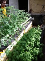 Garden Centre Kitchener Grow Greenhouse Waterfarmers Aquaponics