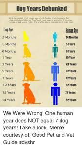 Converting Dog Years To Human Years Chart Cat Years To Human Years Conversion Chart Best 25 Cat