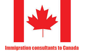 Crackdown on Canada immigration consultants - News - Emirates - Emirates24|7