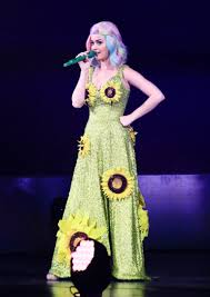 Katy Perry is reportedly blocked from entering China