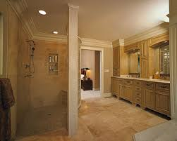 Best Walk In Shower Stalls Designs Six Facts To Know About Walk In Showers  Without Doors
