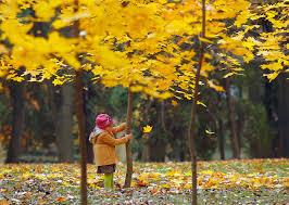 چند راز داشتن پوستی سالم در پاییز