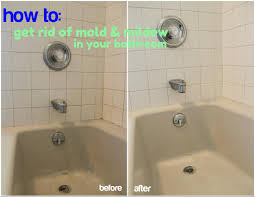 Best Bath Decor best bathroom cleaner for mold and mildew : The dirty truth about my bathroom - Christinas Adventures