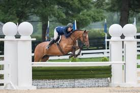 "Endeavor and Patricia Griffith Soar to Victory in the 3'/3'3"" Platinum  Performance/USHJA Green Hunter Incentive Championship 