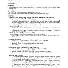 Resume Experience No Experience Resume Sample Prepossessing No Experience Resume 64