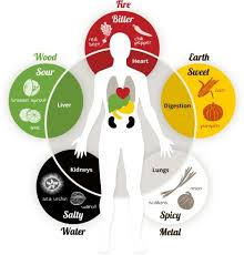 5 Element Theory Chinese Medicine Living
