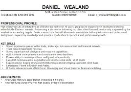 Profile Statements For Resumes Examples Of A Resume Profile Web
