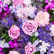 Free Floral Backgrounds Colorful Nature Flower Backgrounds Stock Photo Picture And Royalty