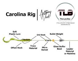 Carolina Rig Diagram Lure Box Fishing Rigs Diagram