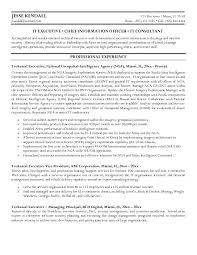 Executive Resume Writing Gorgeous Cto Resume Word Template Resume Writing For Executives Executive