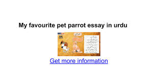 my favourite pet parrot essay in urdu google docs
