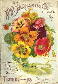 full image for more from a collection of vintage seed catalog covers from the late these