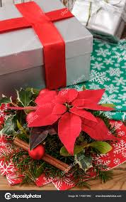 gift decoration with poinsettia flower euphorbia pulc stock image