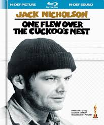 i need help on the book one flew over the cuckoo s nest i need help on the book