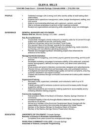 Free Executive Resume Template Cool Star Format Resume Manager Resume Template 28 Free Samples Resume