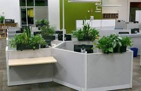 office indoor plants. Indoor Plants On Office Cubicles I