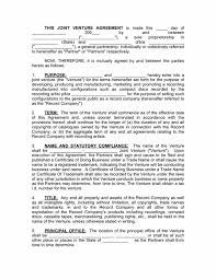Record Company Joint Venture Contract (2 Record Companies ...
