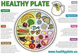 healthy food plate diagram. Beautiful Food Margit Slimakova MSc PhD  Nutrition U0026 Health Coach On Healthy Food Plate Diagram A