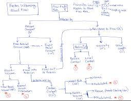 Venous Blood Flow Chart Solved The Attached Flow Chart Describes The Factors That