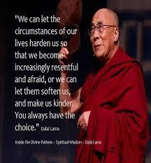 Dalai Lama Quotes Life Unique Download Dalai Lama Quotes On Life Ryancowan Quotes
