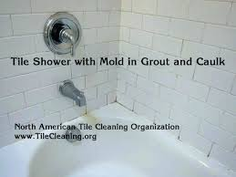 shower tiles cleaner decoration best way to clean shower tile remove mold from shower best clean