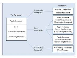 types of essay formats co types of essay formats