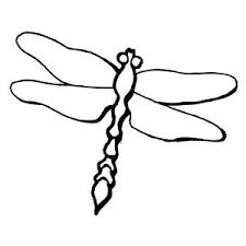 Small Picture Dragonfly Coloring Pages Dragonfly Is Eating Page adult