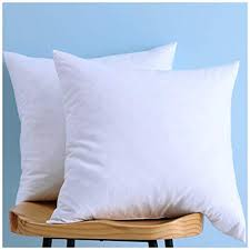 Cheap Down Pillow Inserts