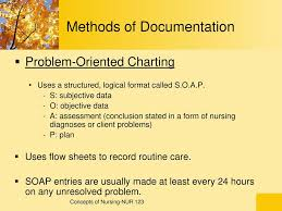 Methods Of Charting Documentation And Reporting Ppt Download