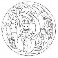 Colora I Mandala Degli Animali Mandala Degli Animali