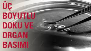 3 Boyutlu Doku ve Organ Basım Projesi - Sabancı Üniversitesi - YouTube