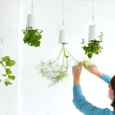 indoor hanging baskets mounted flower pots off the wall metal hanging pots wrought iron wall planter