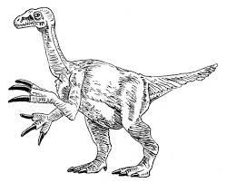 Small Picture Rex Skeleton Colouring Pages Dinosaur Skeleton Coloring Page In
