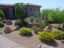 Small Picture pictures of desert landscaping yard Desert Landscaping Ideas