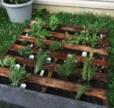 Small Picture 30 Mini Garden Design Ideas Recycling Wood Pallets