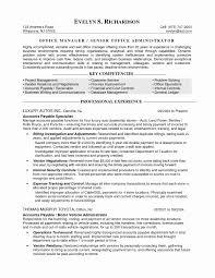 Customer Success Manager Resume Best Of 50 Lovely Resume Format