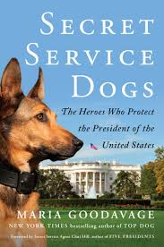 Image result for US Secret Service sniffer dogs