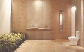 indian bathroom tiles design ideas. best tiles for bathroom india furniture ideas marvelous design inspiration latest in 11 indian d