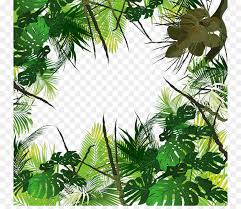 amazon rainforest tree leaves. Tropical Forest Amazon Rainforest Jungle Tropics Trees And Tree Leaves
