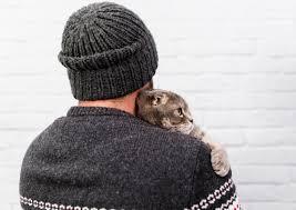 <b>Прелестный кот</b> держал владельца | Бесплатно Фото