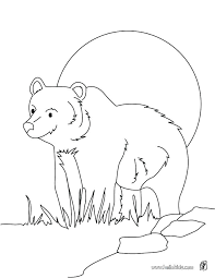 nocturnal animals coloring pages. Wonderful Coloring Nocturnal Animals Coloring Pages Co  Free And C