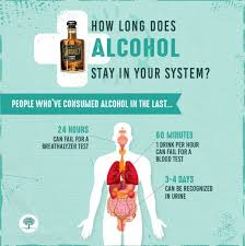 How Long Does Alcohol Stay In Your System Urine Blood