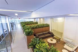 interior landscaping office. Midtown Manhattan Office Plant Display Interior Landscaping R