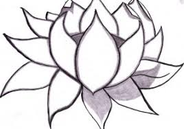 Easy To Draw Roses Bflowers Images Easy Drawing How To Draw A Flower Draw A Flower