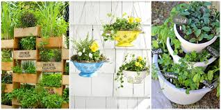 more 5 coolest how to set up a backyard garden