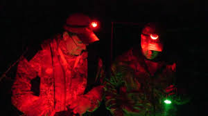 Coyote Hunting At Night With Red Light Hog Predator Varmint Night Hunting Light Wicked Lights