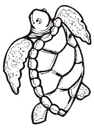 Small Picture Wonderful Turtle Coloring Pages Gallery Colori 683 Unknown