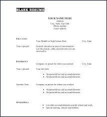 Curriculum Vitae Resume Template Millbayventures Com