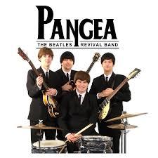 Bildergebnis für Pangea bilder