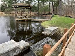 Pond & Wetland Native Planting w. Dam ...